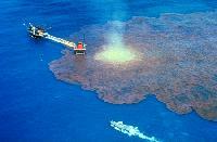 Уроки аварии в Мексиканском заливе на скважине МС-252